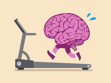 Egzersiz ve Beyin