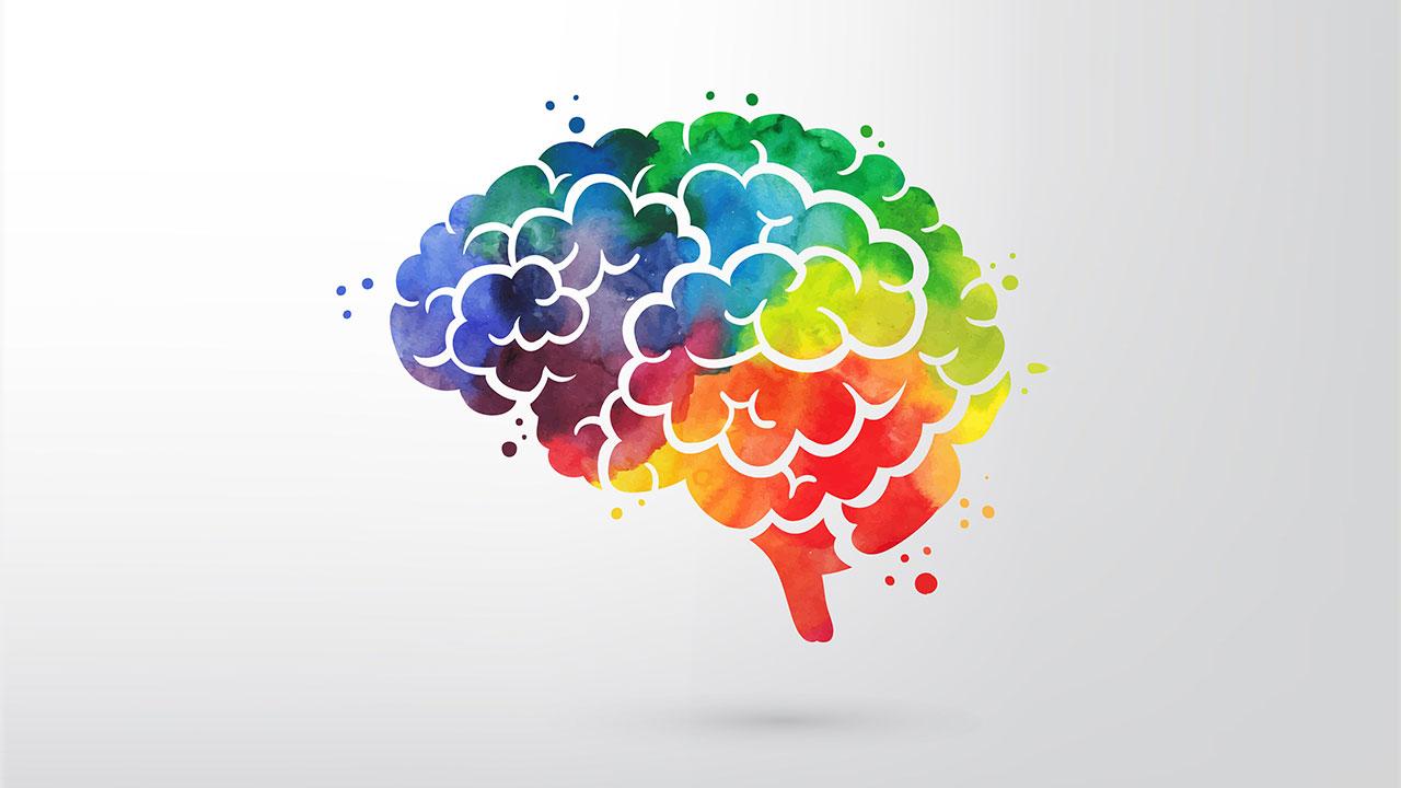 Trafik kazası veya kalp krizi sonrası hasar gören beyin hücreleri kendini nasıl yeniliyor?