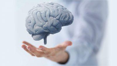 Beyin Sağlığı İçin Beslenme Düzeni ve Yaşam Tarzı Değişiklikleri