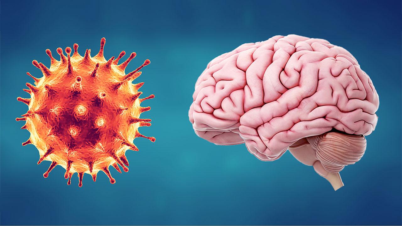 Beynimize korona günlerinde nasıl iyi bakarız?