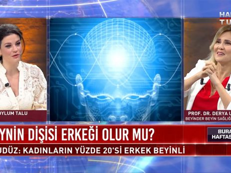 İnsan beyninin gizemi çözüldü mü?