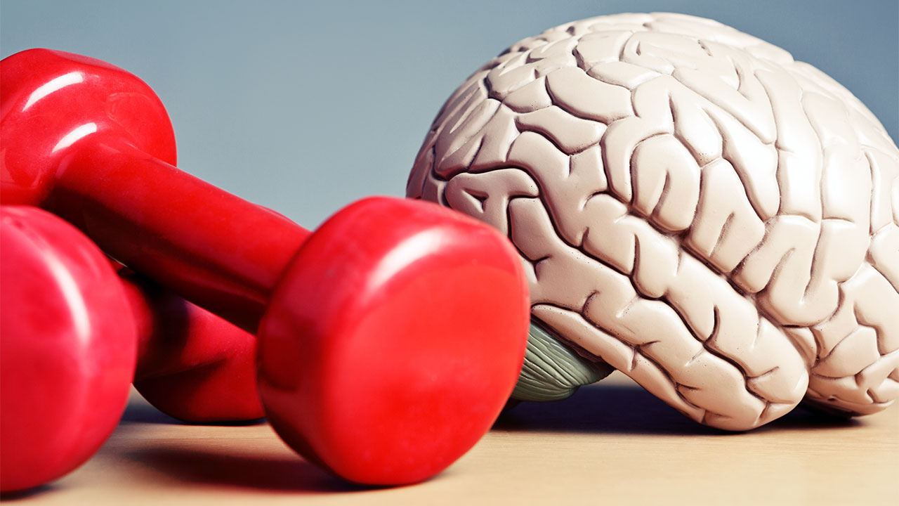 Egzersizle Beynimizi Nasıl Koruruz?