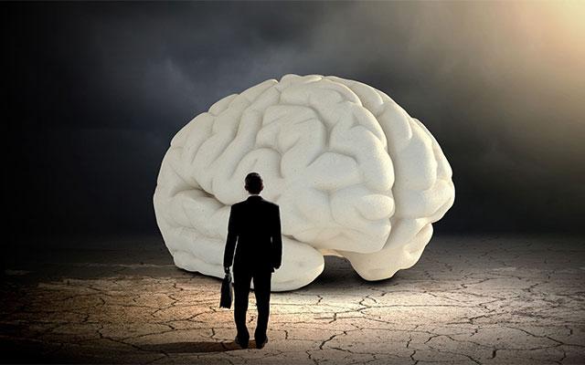 Sağlıklı beynin yapıtaşları