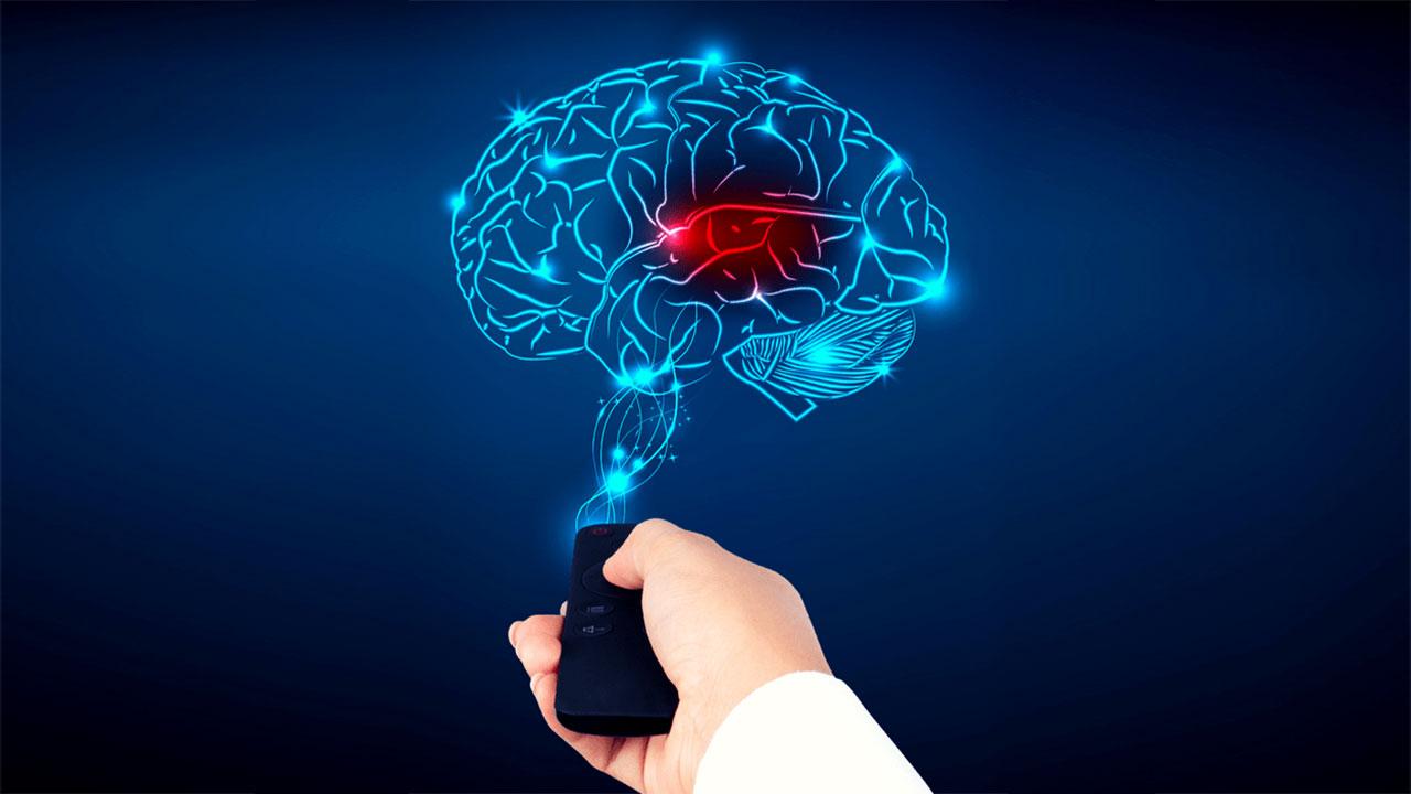 Beyne neler zarar verir?