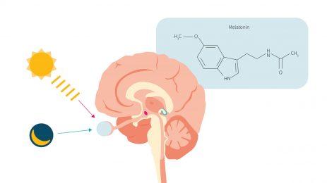 Migren hastalarında Melatonin hormonu faydalı mı?