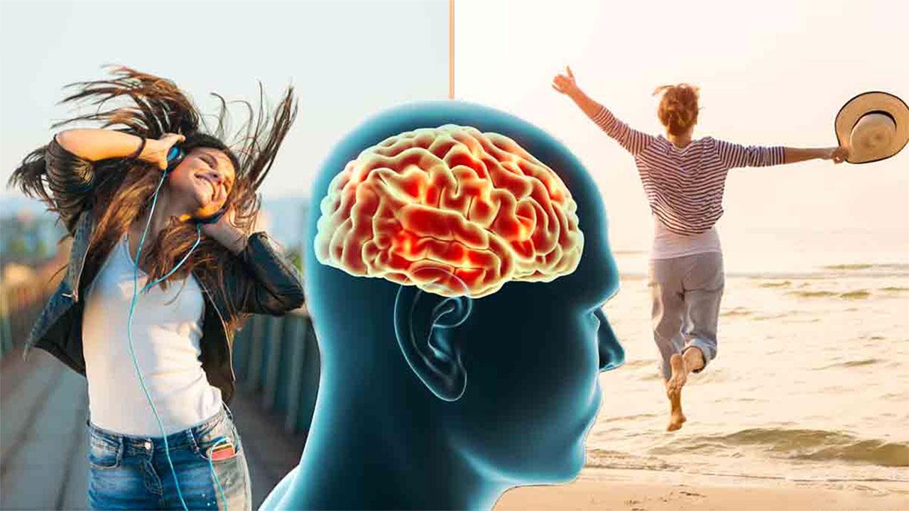 Beyniniz İçin Mükemmel Bir Gün Nasıl Olurdu?