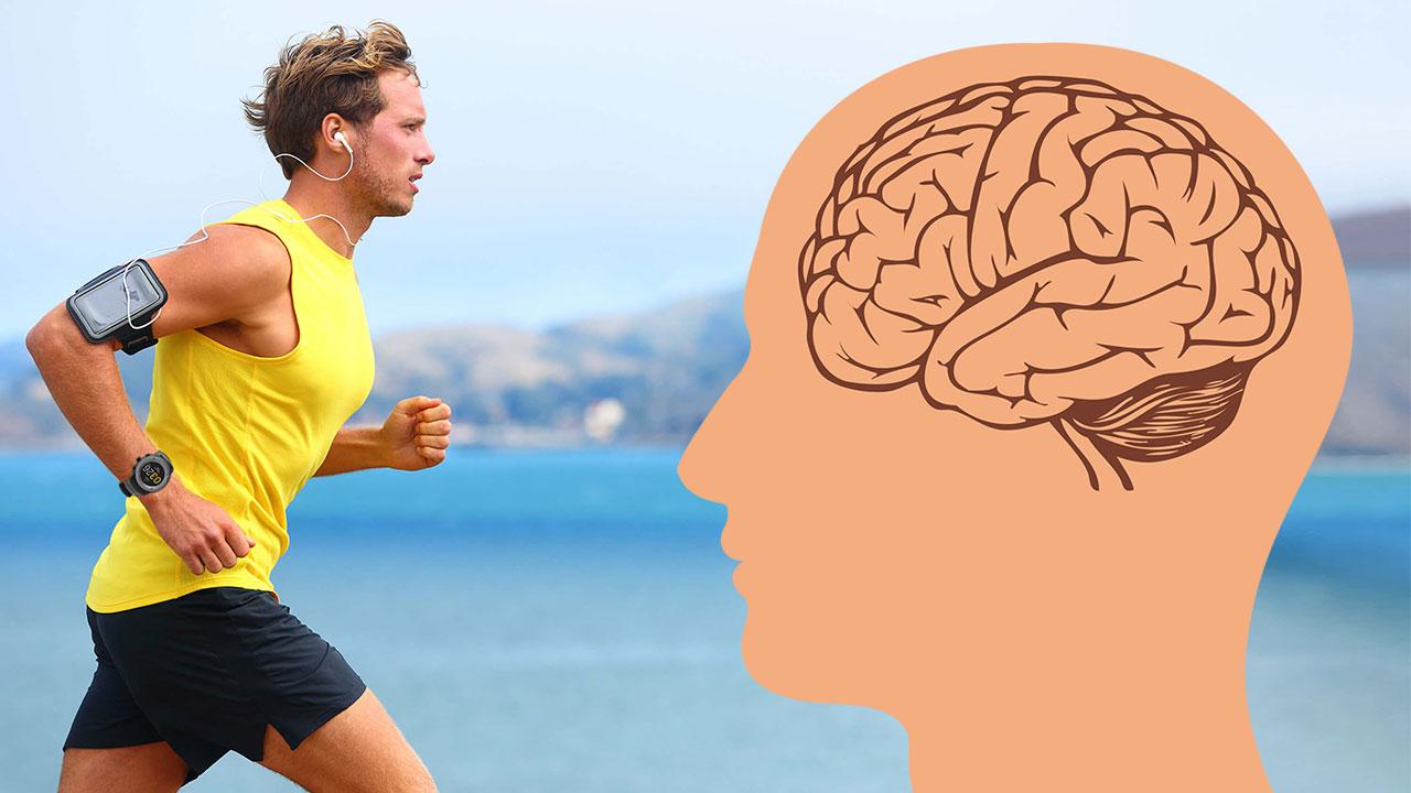 Egzersizlerin Beynimize Nasıl Faydası Olur?