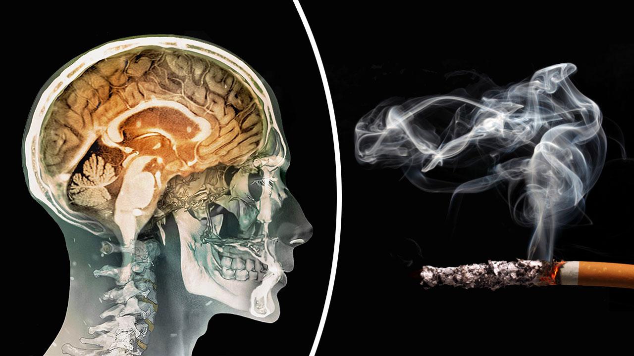 Sigara içenlerin bunama riski daha yüksek