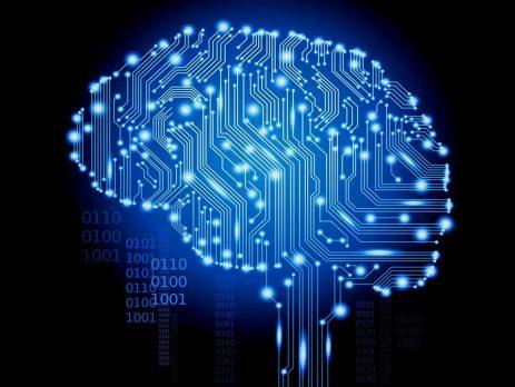 Beynimiz Neden Önemli?
