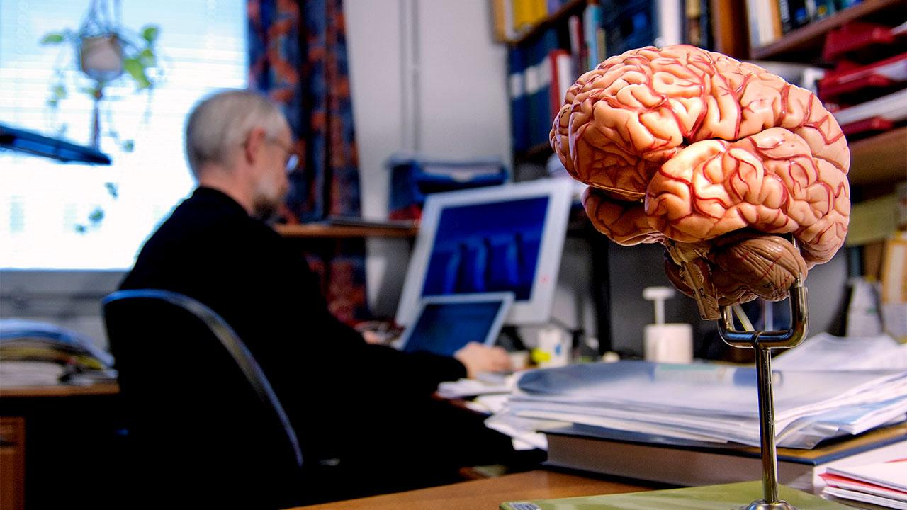Pandemi, İş Hayatı ve Beyin Sağlığı