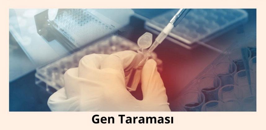 Beyin sisi için gen taraması